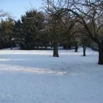 iMble sous la neige